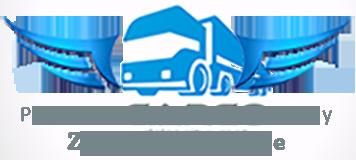 logo Publiczny transport ciężarowy Zbigniew Nełke